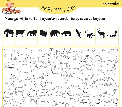 Bak, Bul, Say Etkinliği - Hayvanlar