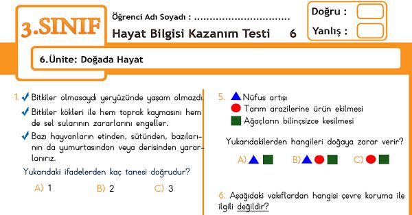 3.Sınıf Hayat Bilgisi Kazanım Testi - 6.Ünite - Doğada Hayat