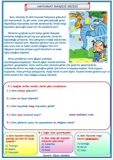2.Sınıf Türkçe Hayvanat Bahçesi Gezisi Okuma Anlama Metin Çalışması  9