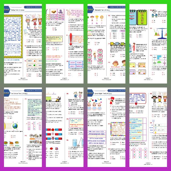 4. Sınıf Ocak Ayı Denemesi (PDF)