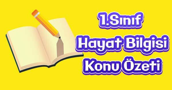 1.Sınıf Hayat Bilgisi Sınıf Kurallarını Belirliyoruz Konu özeti