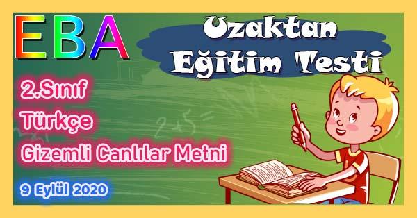 2.Sınıf Türkçe Gizemli Canlılar Metni Uzaktan Eğitim Testi pdf