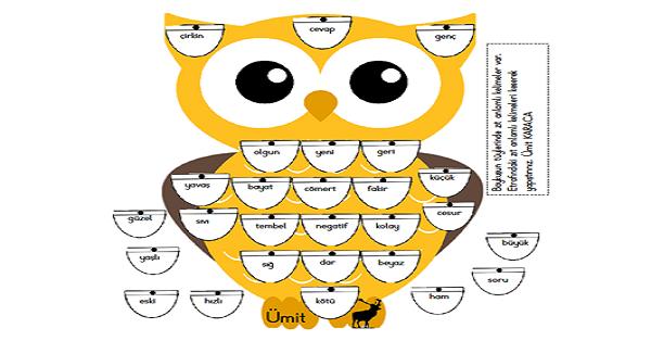 Zıt Anlamlı Kelimeler Baykuş Kes Yapıştır  Etkinliği