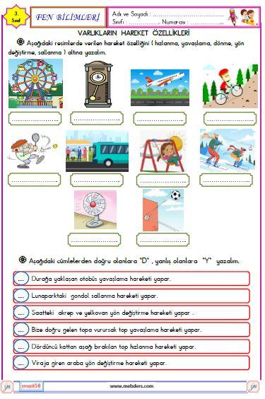 3. Sınıf Fen Bilimleri Varlıkların Hareket Özellikleri Etkinliği 1