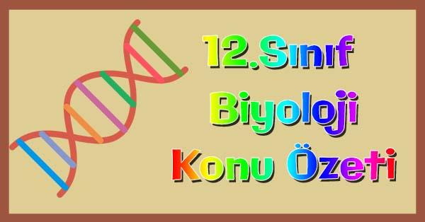 12.Sınıf Biyoloji Canlılık ve Enerji Konu özeti