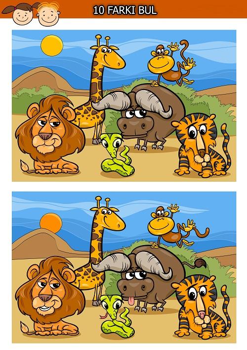 Yırtıcı  hayvanlar arasındaki 10 farkı bulma etkinliği