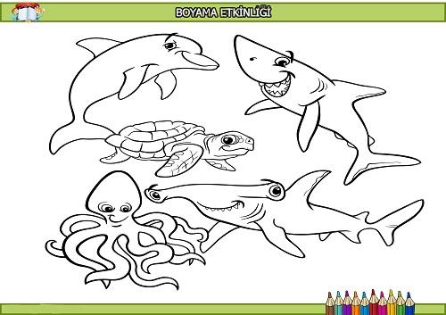 Deniz Hayvanlari Boyama Etkinligi Meb Ders