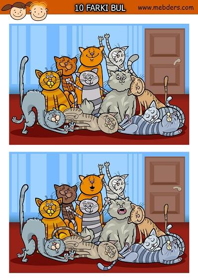 Sevimli kediler arasındaki 10 farkı bulma etkinliği