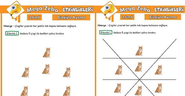 2.Sınıf Mega Zeka Etkinliği - Çizgiyle Ayırma