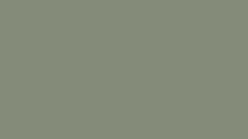 HD Çözünürlükte adaçayı yeşili arka plan