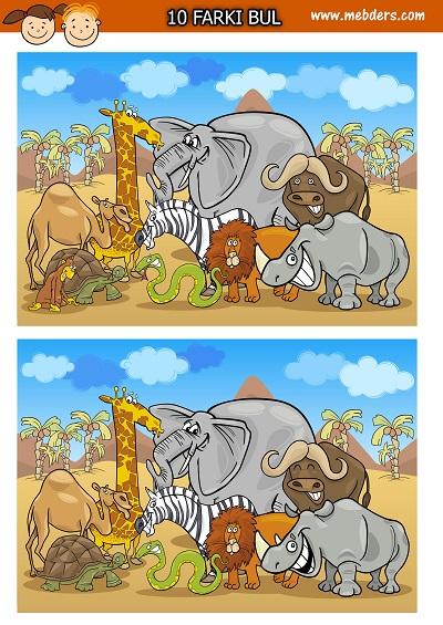 Afrika hayvanları arasındaki 10 farkı bulma etkinliği