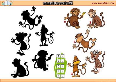 Maymun gölgesi eşleştirme etkinliği