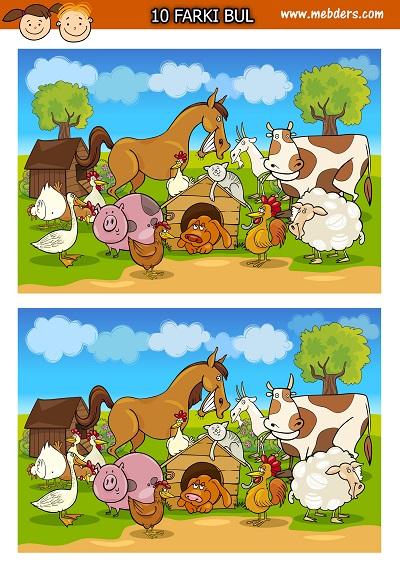 Çiftlik hayvanları arasındaki 10 farkı bulma etkinliği