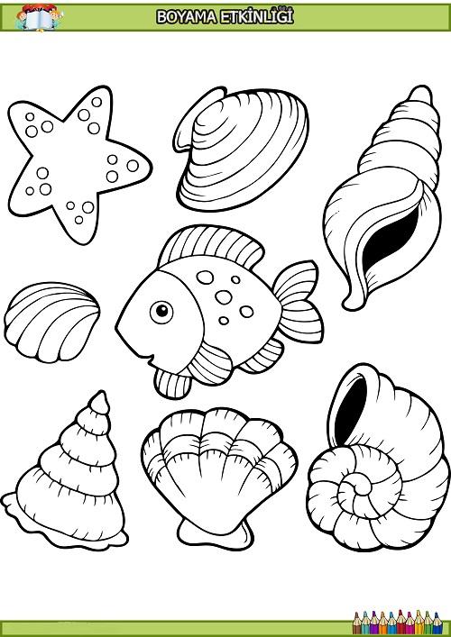 Balik Ve Deniz Kabuklari Boyama Etkinligi Meb Ders