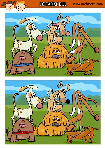Sevimli köpekler arasındaki 10 farkı bulma etkinliği