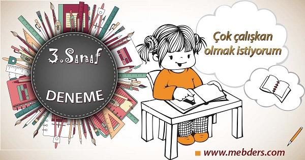 3.Sınıf Yaz Denemesi 1