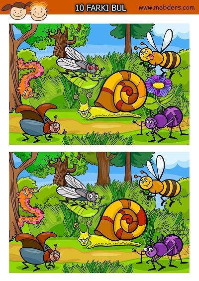 Şaşkın böcekler arasındaki 10 farkı bulma etkinliği