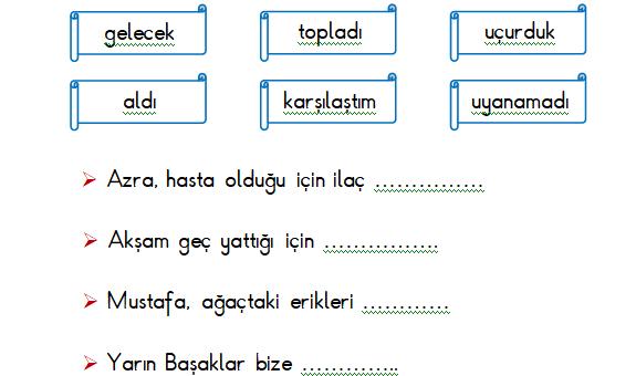 1.Sınıf Türkçe Cümle Çalışması Etkinliği