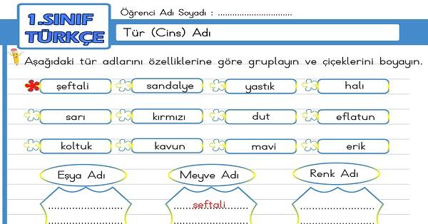 1.Sınıf Türkçe Tür (Cins) Adı Etkinliği