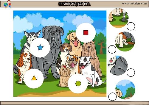 Sevimli köpeklerdeki eksik parçayı bulma etkinliği