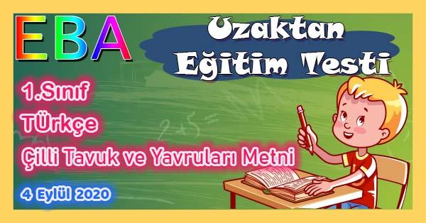 1.Sınıf Türkçe Çilli Tavuk ve Yavruları Metni Uzaktan Eğitim Testi pdf