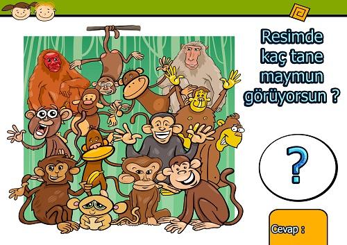 Resimde kaç tane maymun var ? Eğlenceli matematik etkinliği