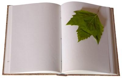 Yapraklı çizgisiz kitap resmi png