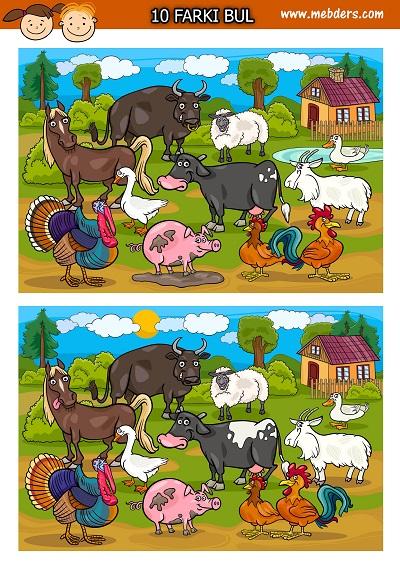 Şaşkın Çiftlik hayvanları arasındaki 10 farkı bulma etkinliği