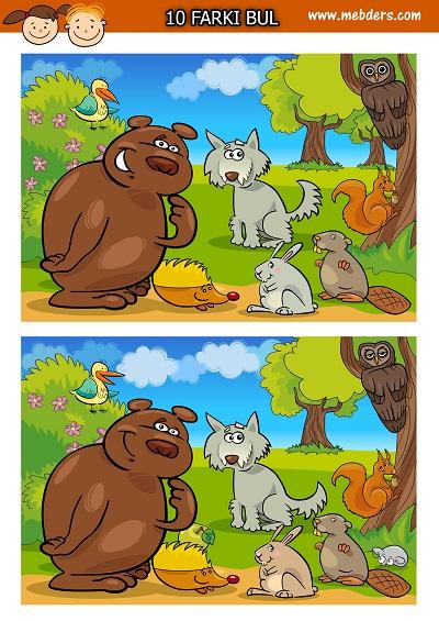 Orman hayvanları arasındaki 10 farkı bulma etkinliği
