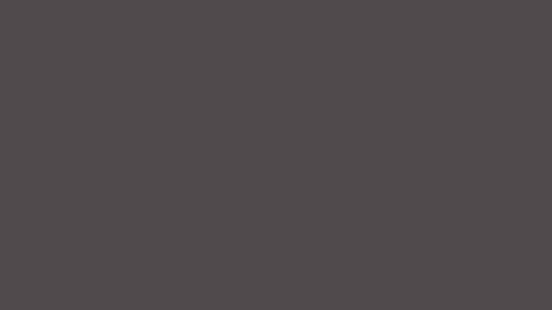 HD çözünürlükte gri kurt renkli arka plan