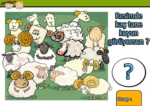 Resimde kaç tane koyun var ? Eğlenceli matematik etkinliği