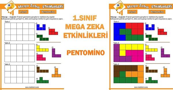 1.Sınıf Mega Zeka Etkinliği - Pentomino