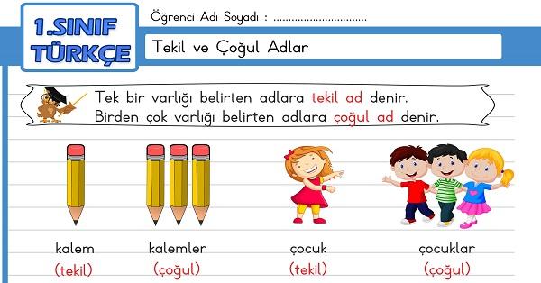 1.Sınıf Türkçe Tekil ve Çoğul Adlar Etkinliği